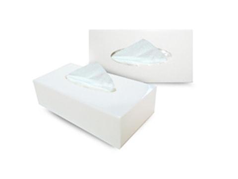 กล่องทิชชู่พลาสติก-TSB9-(B)(W)